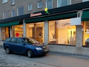 Blommor4u renoveras (foto: Lars Palm)