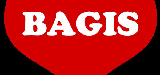 Montage: Bagisbloggen
